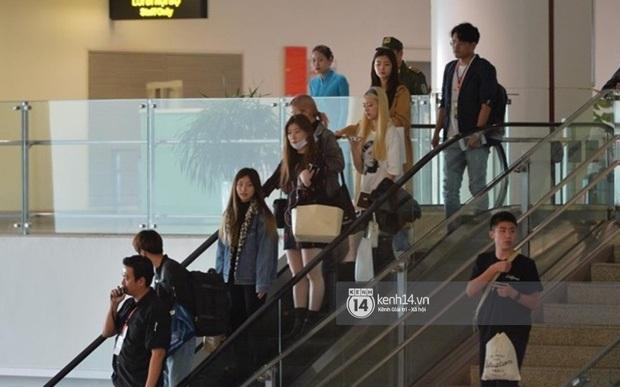 Máu như fan Việt đu idol đến dự AAA tại sân bay Nội Bài: Người tranh thủ học bài ôn thi, người ngủ gục vì chờ 10 tiếng - Ảnh 4.