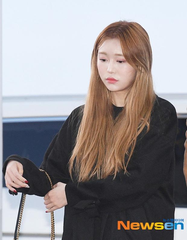 Dàn sao từ Hàn sang Hà Nội dự AAA sáng nay: Yoona buồn bã, Jang Dong Gun, GOT7 vừa khởi hành, sân bay đầy không khí đau thương - Ảnh 20.
