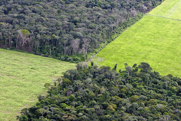 Hình ảnh từ trên cao cho thấy sự tác động của con người đến Trái Đất - Ảnh 13.
