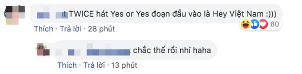 Rò rỉ tin đồn: TWICE sẽ hát tiếng Việt, Bích Phương có màn collab với nghệ sĩ Hàn tại AAA 2019? - Ảnh 2.