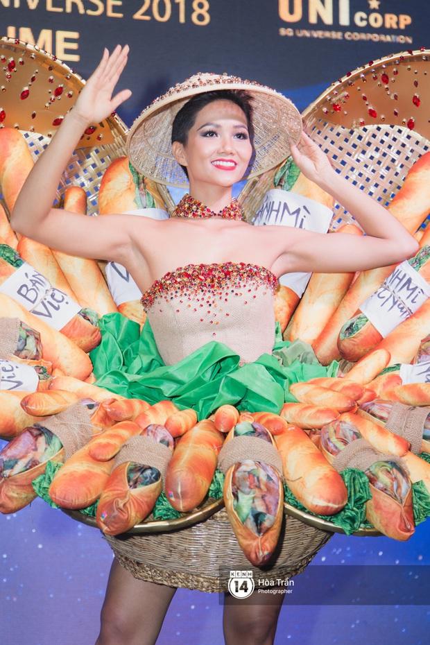 Bánh mì, Nàng Mây, Cà phê phin... Trang phục dân tộc nào ấn tượng nhất khi đi thi Miss Universe? - Ảnh 5.