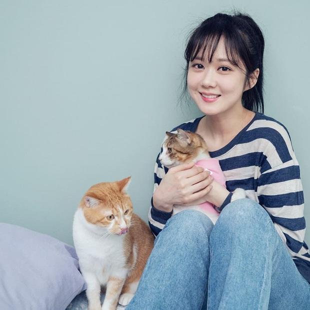 Park Min Young, Park Shin Hye... hay cả Han Ji Won đã ngoài 40: Tất cả những nàng có tuổi của Hàn đều đang hồi xuân nhan sắc nhờ tóc mái lưa thưa  - Ảnh 5.
