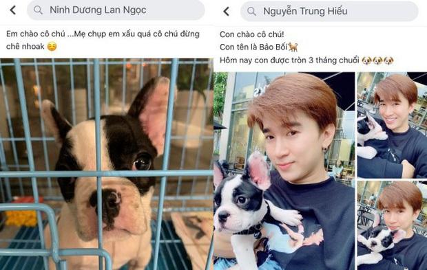 Ninh Dương Lan Ngọc thừa nhận có bạn trai, netizen lập tức lục lại loạt bằng chứng hẹn hò Chi Dân dù một mực phủ nhận - Ảnh 8.