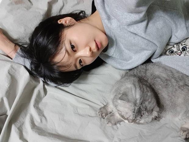 Park Min Young, Park Shin Hye... hay cả Han Ji Won đã ngoài 40: Tất cả những nàng có tuổi của Hàn đều đang hồi xuân nhan sắc nhờ tóc mái lưa thưa  - Ảnh 7.