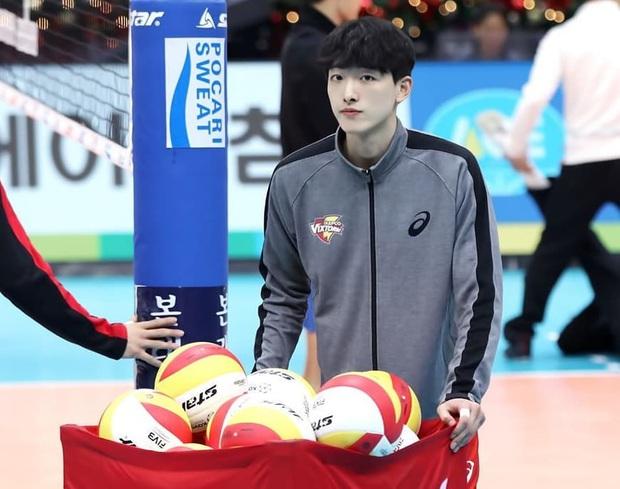 Thời đại trai xinh gái đẹp có khác, đến vận động viên bóng chuyền cũng sáng láng y idol Kpop vậy! - Ảnh 2.