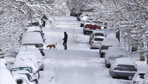 Bão tuyết làm tê liệt giao thông đường bộ và hàng không trước thềm lễ Tạ ơn ở Mỹ  - Ảnh 1.