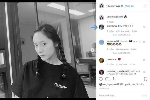 Amber Liu bị Krystal F(X) bơ đẹp chỉ vì đăng ảnh ăn món salad dưa chuột mà cô nàng ghét cay ghét đắng? - Ảnh 2.