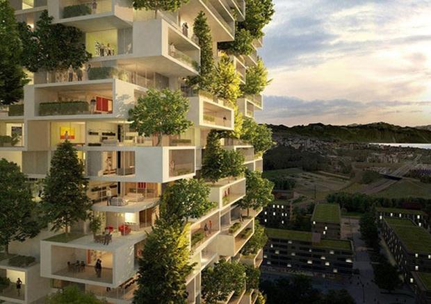 """""""Phản đối trồng cây là một phong trào cộng đồng"""" dù đồng ý hay không, bạn cũng phải hiểu đúng để thế giới có thêm một hi vọng xanh. - Ảnh 8."""