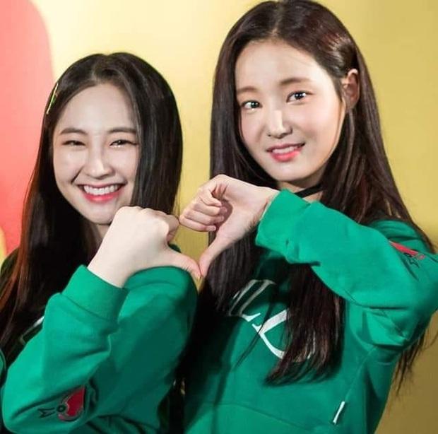 BIẾN GIỮA ĐÊM: 2 thành viên Yeonwoo và Taeha chính thức rời MOMOLAND, trường hợp của Daisy đang xem xét! - Ảnh 1.