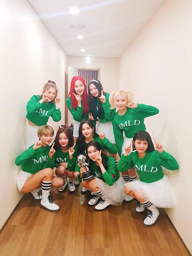 Làng giải trí Hàn năm 2019 chứng kiến 24 idol rời nhóm, từ nổi đình đám cho đến tân binh đều khiến fan bàng hoàng - Ảnh 40.