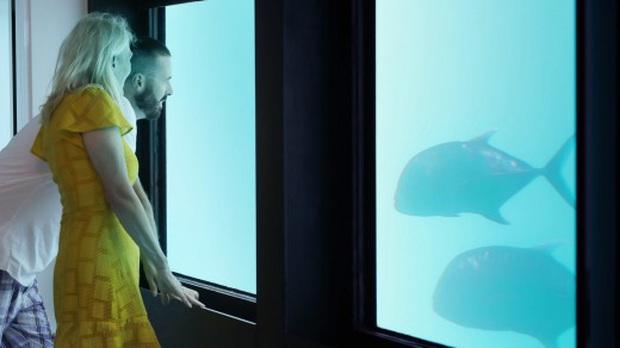 """Khách sạn """"ba chìm bảy nổi"""" cho du khách ngủ cùng… cá dưới biển, dịch vụ tuyệt hảo nhưng lại không có wifi - Ảnh 5."""