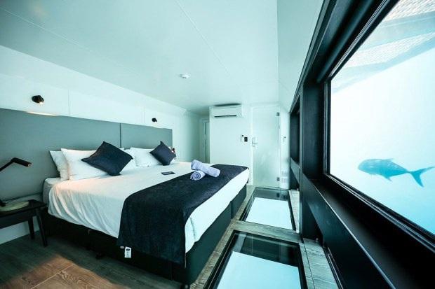 """Khách sạn """"ba chìm bảy nổi"""" cho du khách ngủ cùng… cá dưới biển, dịch vụ tuyệt hảo nhưng lại không có wifi - Ảnh 2."""