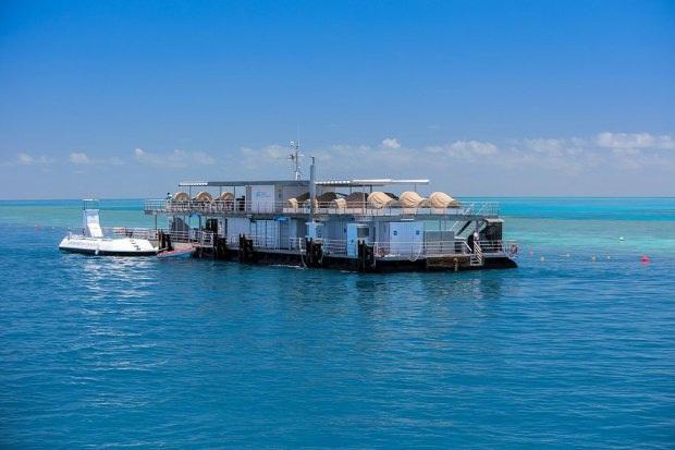 """Khách sạn """"ba chìm bảy nổi"""" cho du khách ngủ cùng… cá dưới biển, dịch vụ tuyệt hảo nhưng lại không có wifi - Ảnh 4."""