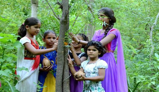 Phong tục tập quán lạ: Làng nghèo ở Ấn Độ trồng 111 cây xanh mỗi một bé gái được sinh ra - Ảnh 2.