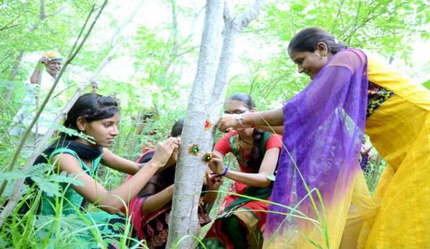 Phong tục tập quán lạ: Làng nghèo ở Ấn Độ trồng 111 cây xanh mỗi một bé gái được sinh ra - Ảnh 3.