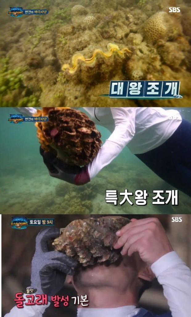 Món sò tai tượng trong vlog Quỳnh Trần JP hoá ra là đặc sản quý, từng khiến 1 nữ diễn viên Hàn đối diện án tù sau khi ăn - Ảnh 12.