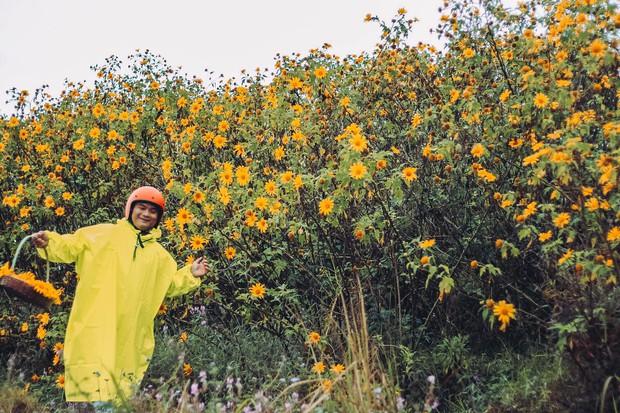 Bất chấp trời mưa, chàng photographer cho ra đời bộ ảnh chụp cùng hoa dã quỳ với concept có 1-0-2 khiến dân tình bấn loạn - Ảnh 3.