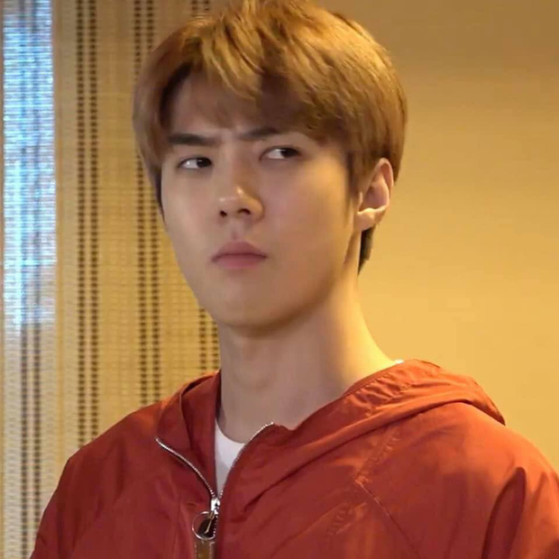 Dựng tóc gáy với loạt thuyết âm mưu khủng khiếp của EXO: SM đã viết sẵn kịch bản cho nhóm kể từ 7 năm trước luôn rồi à? - Ảnh 14.