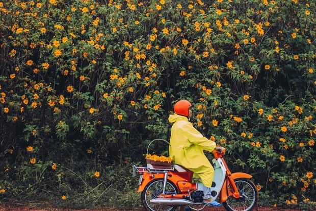 Bất chấp trời mưa, chàng photographer cho ra đời bộ ảnh chụp cùng hoa dã quỳ với concept có 1-0-2 khiến dân tình bấn loạn - Ảnh 6.