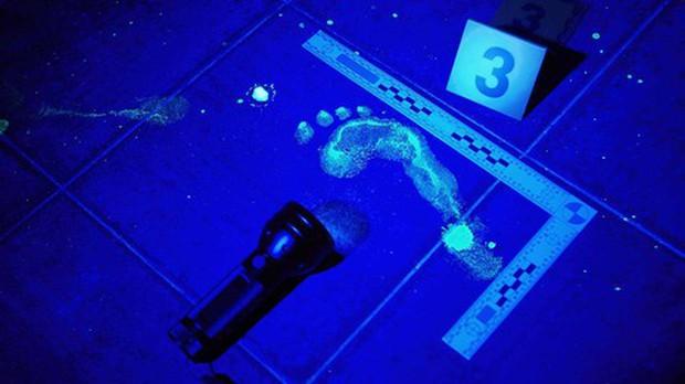 Khoa học pháp y: Bước tiến vĩ đại của ngành hình sự, đáp án của loạt vụ án suýt bị chôn vùi nhờ những vũ khí lợi hại - Ảnh 2.