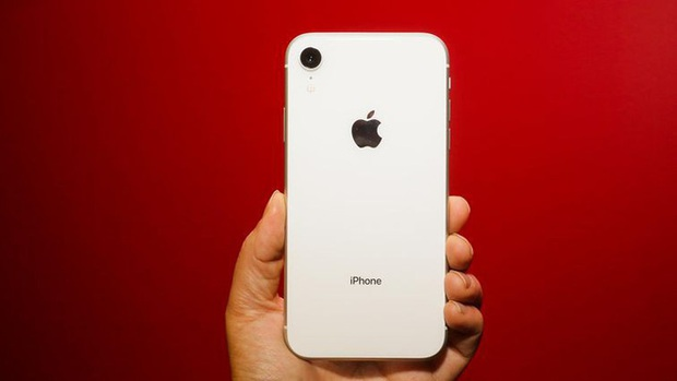 So sánh iPhone 11 với ma thuật Deep Fusion và iPhone XR, mèo nào cắn mỉu nào? - Ảnh 1.