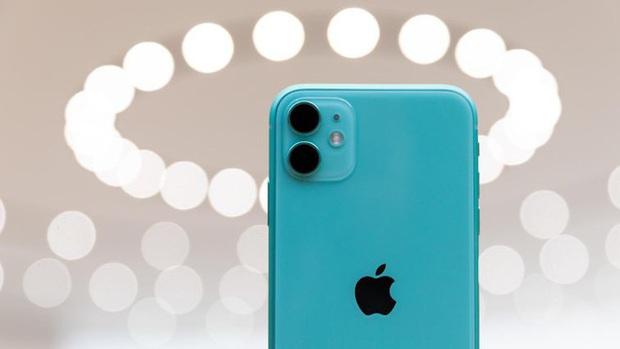 So sánh iPhone 11 với ma thuật Deep Fusion và iPhone XR, mèo nào cắn mỉu nào? - Ảnh 2.