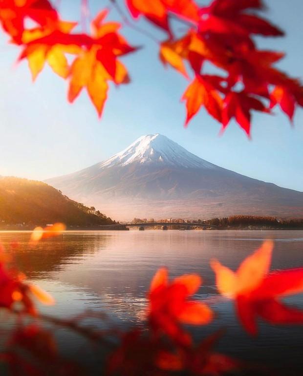 Tìm đâu ra nước nào được như Nhật Bản: Cả 4 mùa đều có nét đặc trưng riêng, đi vào lúc nào cũng thấy đẹp! - Ảnh 7.