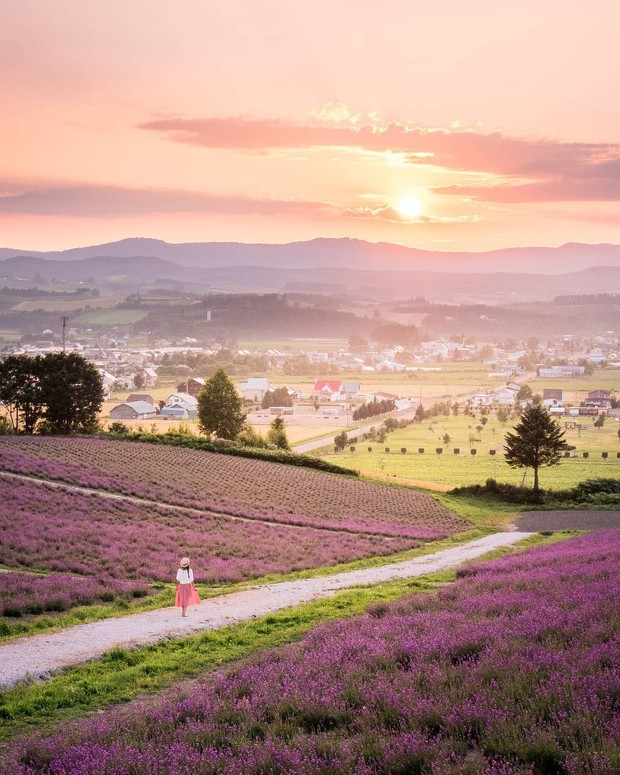 Tìm đâu ra nước nào được như Nhật Bản: Cả 4 mùa đều có nét đặc trưng riêng, đi vào lúc nào cũng thấy đẹp! - Ảnh 8.