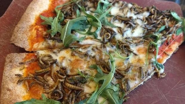 Kinh sốc với món pizza sâu trong menu của Google dành cho nhân viên: Miễn phí đấy nhưng ai dám ăn thật? - Ảnh 1.