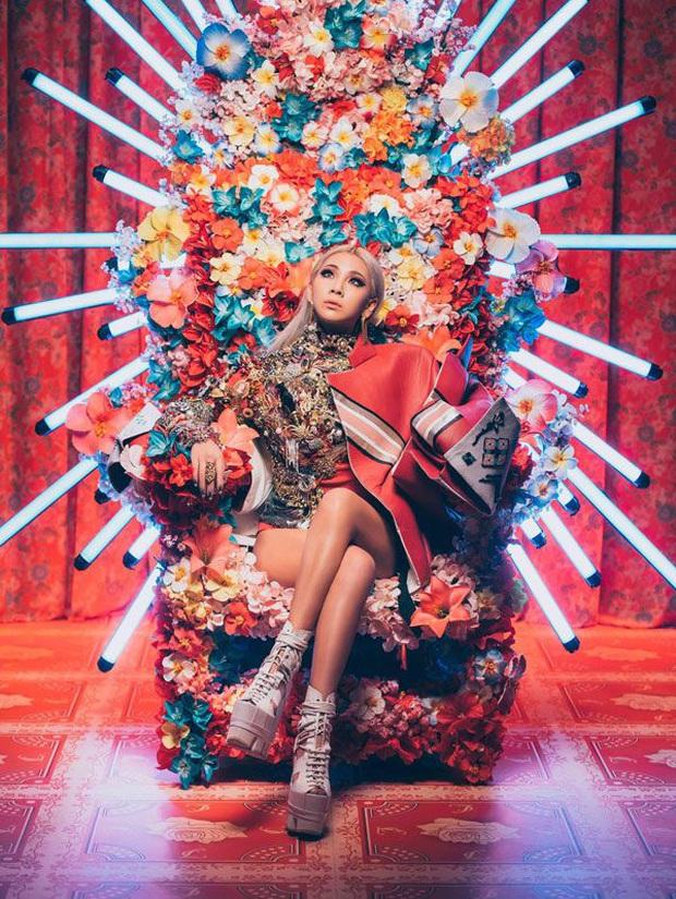 10 năm nhìn lại hành trình của 2NE1 trên show thực tế, lột xác nhất là CL! - Ảnh 1.