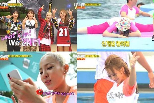 10 năm nhìn lại hành trình của 2NE1 trên show thực tế, lột xác nhất là CL! - Ảnh 8.