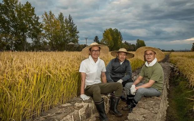 Bị chê bai hết thời, Nhĩ Khang Châu Kiệt gây choáng khi trở thành nông dân với gia sản hàng ngàn tỷ đồng  - Ảnh 4.