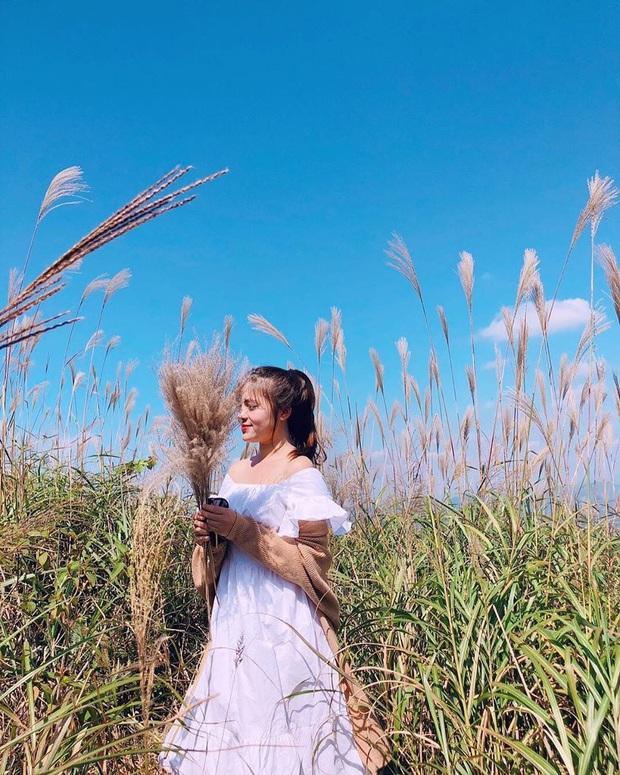"""""""Sống lưng khủng long"""" Bình Liêu đang vào mùa cỏ lau đẹp như một giấc mơ, xem ảnh chỉ biết ôm mộng được đến 1 lần! - Ảnh 11."""