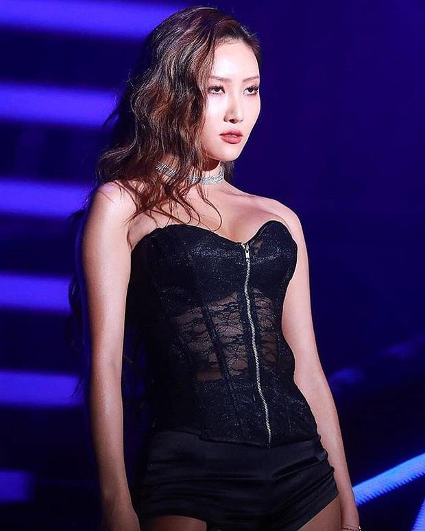 """Nếu không có SNSD, Tiffany sẽ lập team với Lisa, Seulgi cùng """"nữ hoàng sexy"""" của Gen 3 thành girlgroup trong mơ - Ảnh 3."""