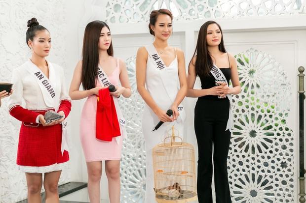 Hoa hậu Hoàn vũ VN: Thúy Vân dẫn đầu, cô gái Việt kiều khiến giám khảo đơ người khi nói... tiếng Nga - Ảnh 3.