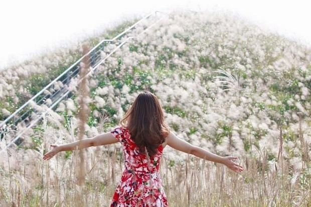 """""""Sống lưng khủng long"""" Bình Liêu đang vào mùa cỏ lau đẹp như một giấc mơ, xem ảnh chỉ biết ôm mộng được đến 1 lần! - Ảnh 28."""