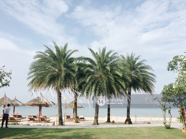 Độc quyền: Không gian lễ cưới Đông Nhi - Ông Cao Thắng đã hoàn thiện, đẹp lung linh như cổ tích giữa biển đảo Phú Quốc - Ảnh 4.