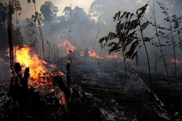 Cháy rừng kỷ lục ở Amazon đã thể hiện hậu quả: Dãy núi dài nhất thế giới hiện đang tan chảy với tốc độ cực nhanh - Ảnh 1.