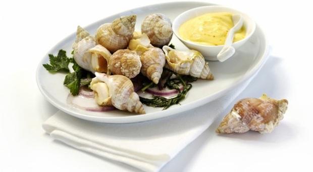 Ốc Bulot Pháp: Từng chả ai ăn, dùng làm mồi cho cá đến chỗ trở thành thực phẩm đắt cả nửa triệu bạc vẫn hết hàng - Ảnh 3.