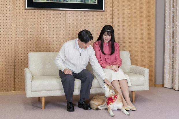 """Công chúa Nhật Bản đánh dấu tuổi 18 bằng bộ ảnh đặc biệt, người hâm mộ xuýt xoa những tấm hình """"ngày xưa ơi"""" - Ảnh 3."""