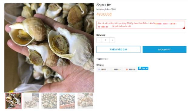 Ốc Bulot Pháp: Từng chả ai ăn, dùng làm mồi cho cá đến chỗ trở thành thực phẩm đắt cả nửa triệu bạc vẫn hết hàng - Ảnh 9.