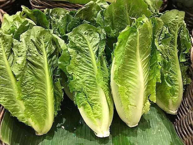 Ăn salad và rau sống, hàng trăm người bị nhiễm khuẩn E. coli - Ảnh 1.