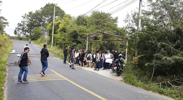 Xe khách lao xuống vực ở Đà Lạt, 15 người may mắn thoát nạn - Ảnh 2.