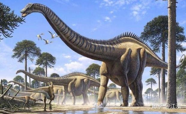 Loài khủng long có lông lâu đời nhất được tìm thấy ở Bắc Mỹ, sống cách đây 150 triệu năm - Ảnh 3.