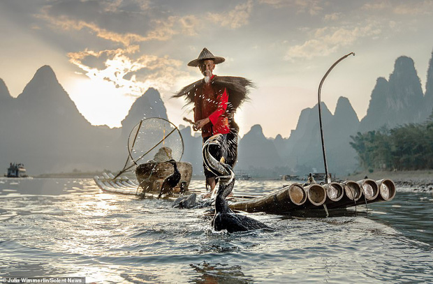 Loạt hình ảnh lão ngư bắt cá bằng chim cốc độc đáo khó rời mắt trong khung cảnh đẹp như tranh thuỷ mặc - Ảnh 2.