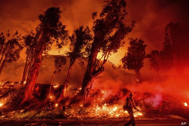 Toàn cảnh Trái đất năm 2019 thực sự rực cháy theo đúng nghĩa đen: Amazon cháy kỷ lục, nhưng đằng sau còn vấn đề hết sức đáng lo ngại - Ảnh 2.