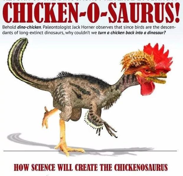 Làm thế nào để hồi sinh một con khủng long cách đây 65 triệu năm? - Ảnh 8.
