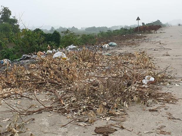 Kinh hoàng những bãi rác khổng lồ nằm ngay trên đê chống lũ - Ảnh 12.