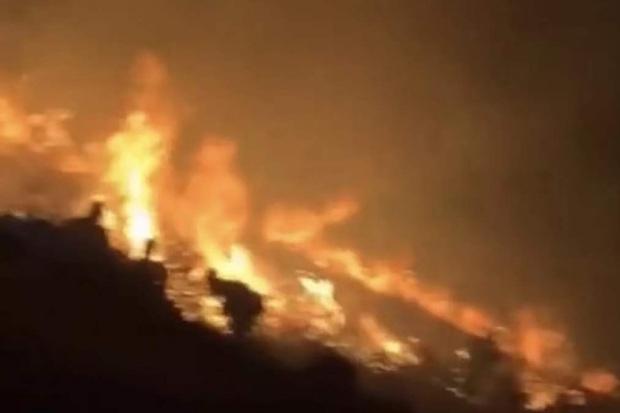 Đốt pháo hoa kỉ niệm ngày cùng nhau lên núi ngắm sao băng, cặp đôi gây cháy lớn khiến hơn 200 lính cứu hoả phải đến dập lửa trong đêm - Ảnh 1.