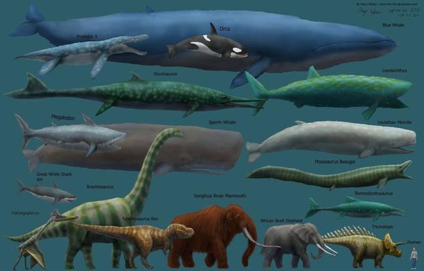 Vì sao động vật tiền sử lại to lớn gấp nhiều lần động vật ngày nay? - Ảnh 2.